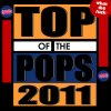 Mashup Germany - Top of the Pops 2011 (What The Fuck)